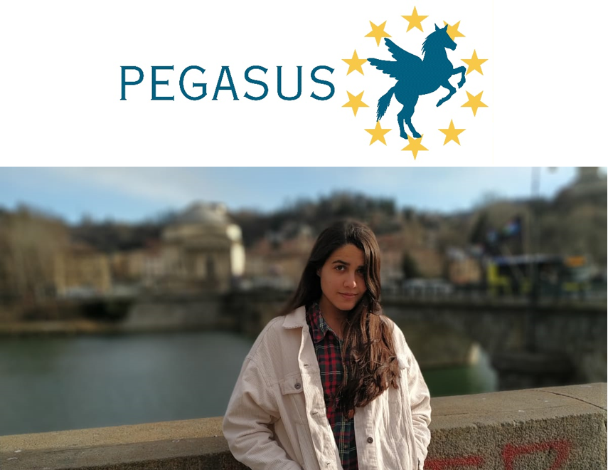 ESR-3 Sara Jimenez won the 2nd position in PEGASUS Student Conference.
